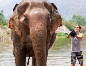 elephant-nature-park-42